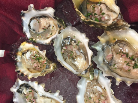 Taste Restaurant and Wine Bar - Oysters